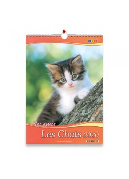 Calendrier Nos amis les chats grand format