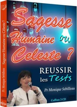 Réussir les tests : Sagesse humaine ou céleste ?